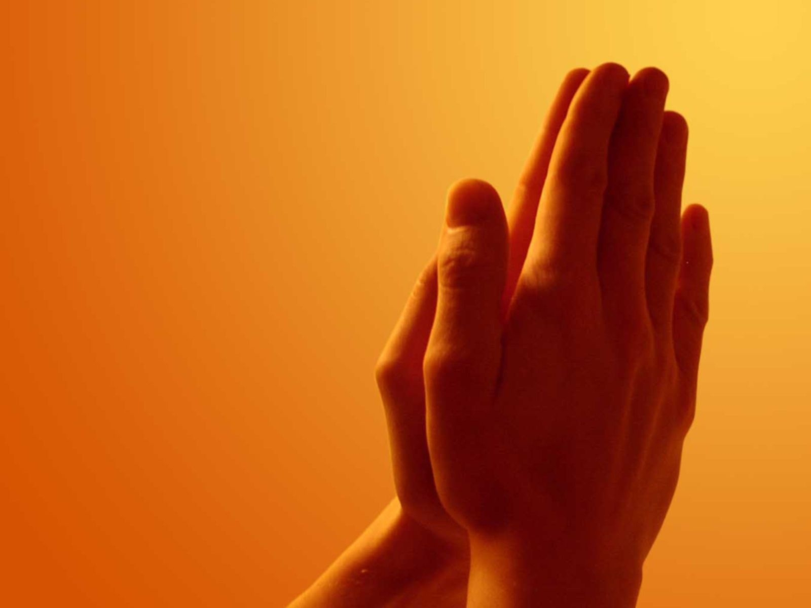 free praying hands, computer desktop wallpapers, pictures, images