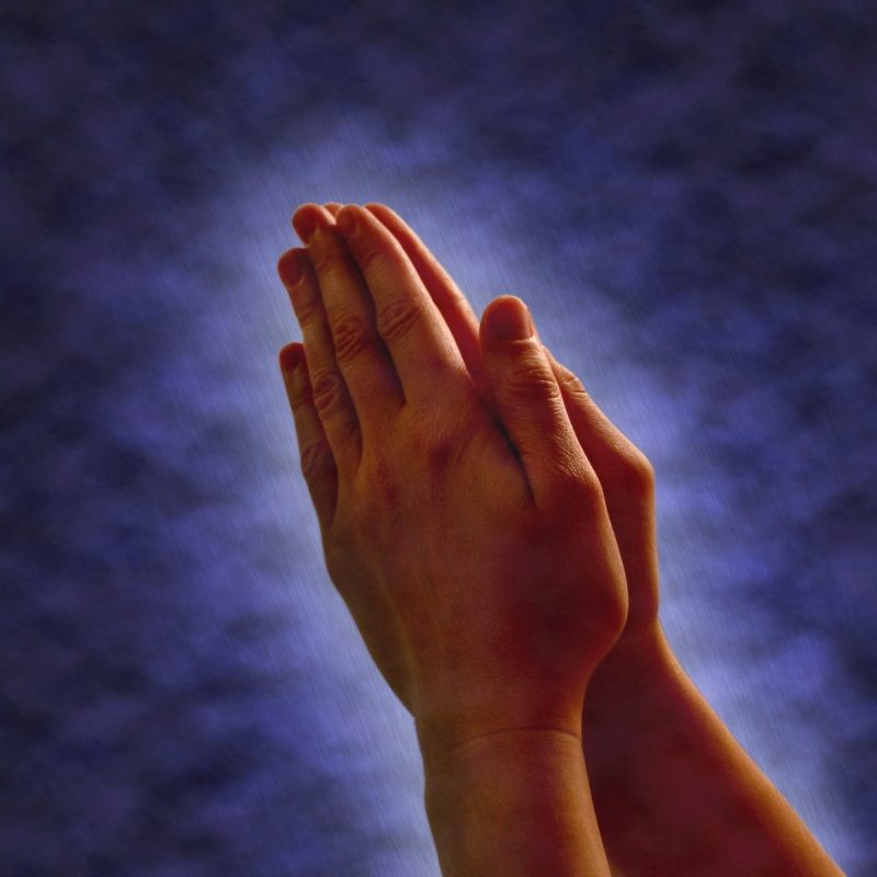 10 Most Popular Images Of Praying Hands FULL HD 1080p For PC Desktop 2020 free download free praying hands images pictures and royalty free stock photos 800x800