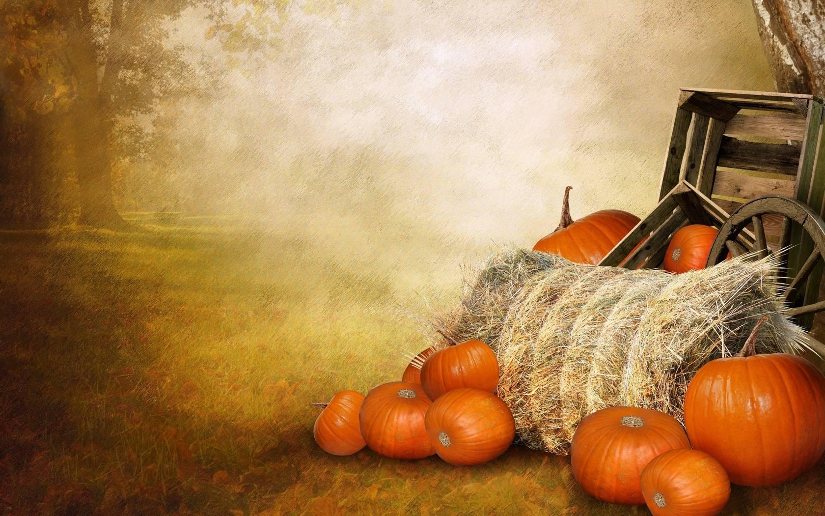 free pumpkin wallpapers - wallpaper cave