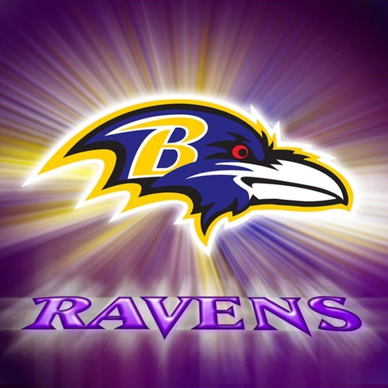 10 Best Baltimore Ravens Wallpapers Free FULL HD 1080p For PC Desktop 2018 free download free ravens wallpaper group 55 800x800