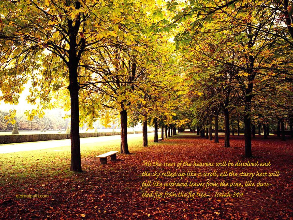 free religious fall pictures | fall trees wallpaper - christian