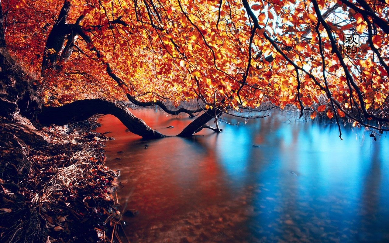 10 Best Seasonal Wallpaper For Desktop FULL HD 1920×1080 For PC Desktop