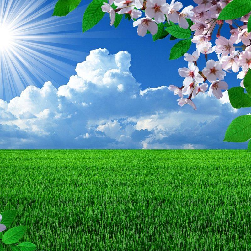 10 Top Free Desktop Spring Wallpaper FULL HD 1920×1080 For PC Background 2018 free download free spring desktop wallpapers backgrounds wallpapersafari best 4 800x800