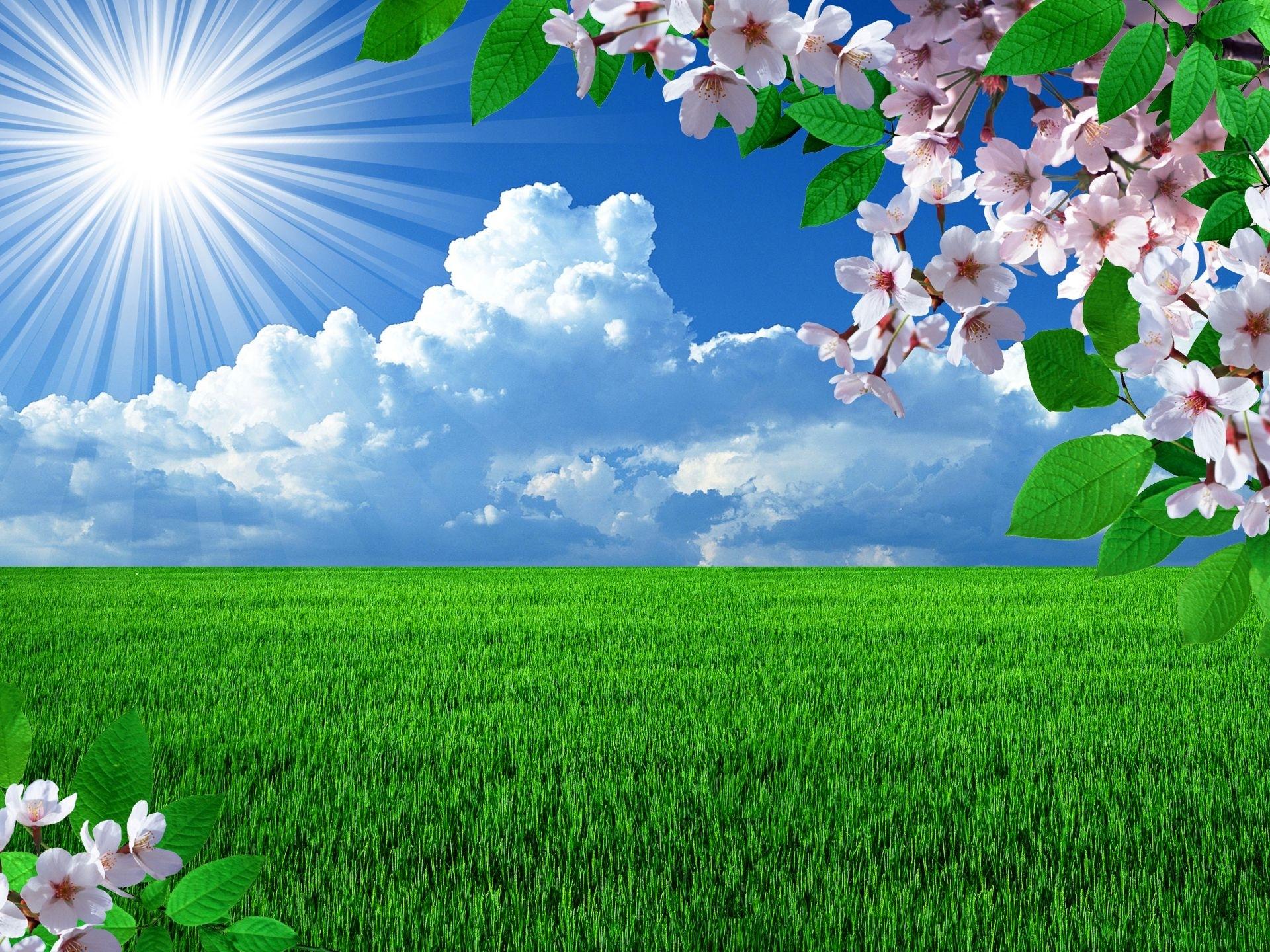 free spring desktop wallpapers backgrounds - wallpapersafari | best