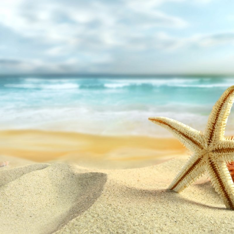 10 Most Popular Summer Pics For Wallpaper FULL HD 1080p For PC Desktop 2018 free download free summer wallpaper 1080p long wallpapers 800x800