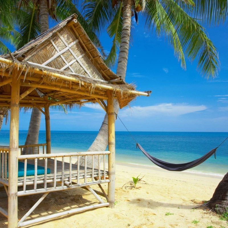 10 Most Popular Free Summer Wallpaper For Desktop FULL HD 1080p For PC Background 2021 free download free summer wallpapers for desktop wallpaper cave 10 800x800