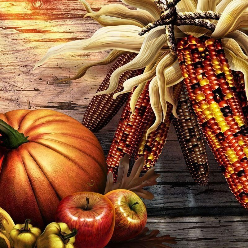 10 Latest Thanksgiving Desktop Backgrounds Free FULL HD 1080p For PC Desktop 2018 free download free thanksgiving computer wallpaper backgrounds wallpaper cave 1 800x800