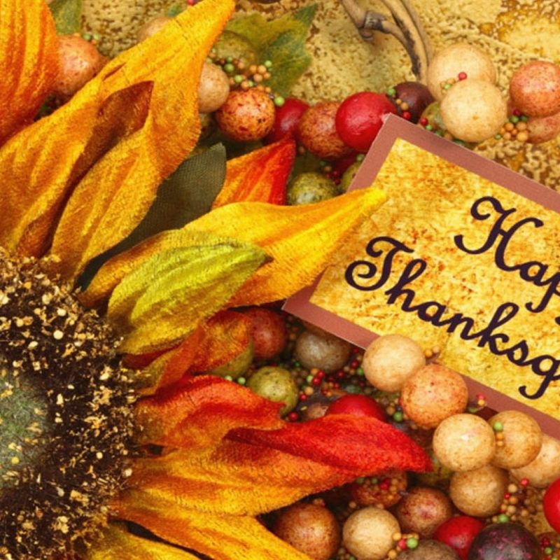 10 New Thanksgiving Desktop Wallpaper Free FULL HD 1080p For PC Background 2021 free download free thanksgiving desktop wallpapers backgrounds 2 800x800