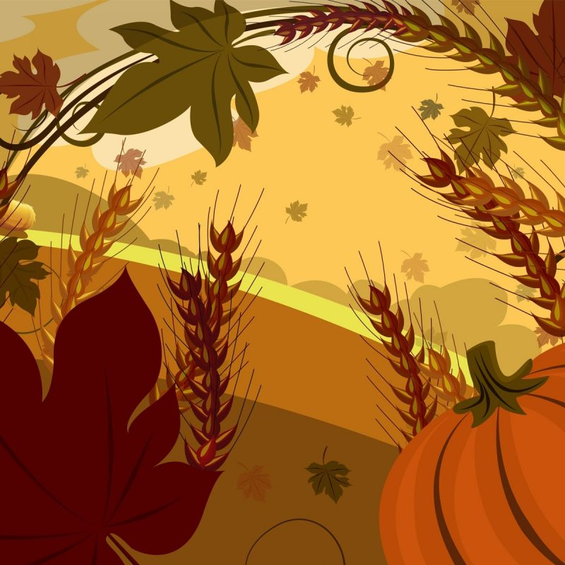 10 Best Thanksgiving Wallpaper For Android FULL HD 1920×1080 For PC Background 2018 free download free thanksgiving wallpaper photo long wallpapers 800x800