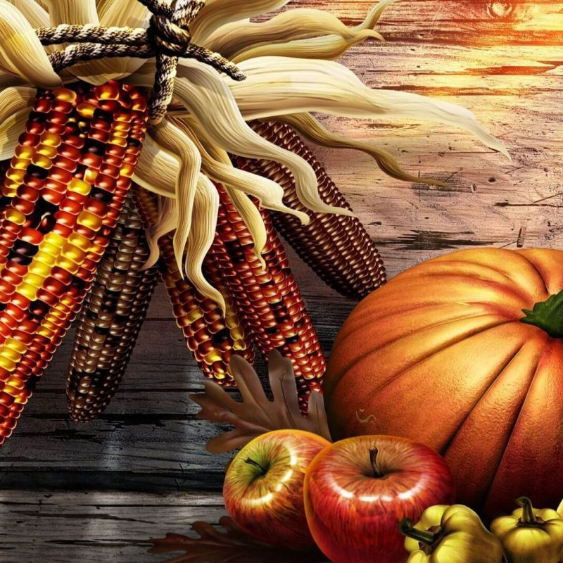 10 Most Popular Free Thanksgiving Screensavers Wallpaper FULL HD 1080p For PC Background 2018 free download free thanksgiving wallpapers hd 2018 download pixelstalk 800x800