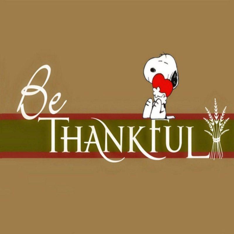 10 Best Thanksgiving Wallpaper For Desktop FULL HD 1080p For PC Desktop 2018 free download free thanksgiving wallpapers hd desktop backgrounds thanksgiving 800x800