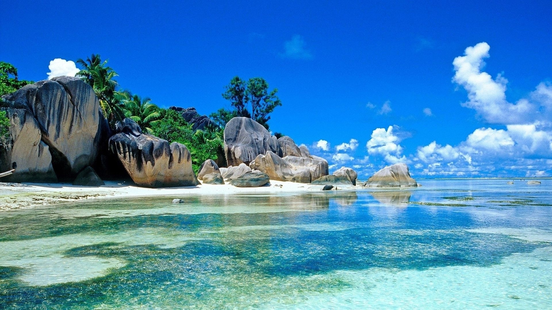 free tropical beach backgrounds « long wallpapers
