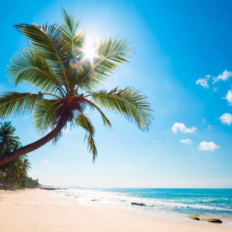 10 Best Tropical Beach Desktop Backgrounds FULL HD 1920×1080 For PC Background 2018 free download free tropical beach wallpaper high quality long wallpapers 800x800