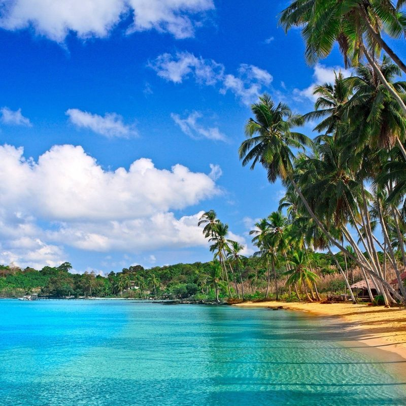 10 Best Tropical Beach Hd Wallpaper FULL HD 1920×1080 For PC Background 2018 free download free tropical desktop backgrounds wallpaper hd wallpapers 800x800