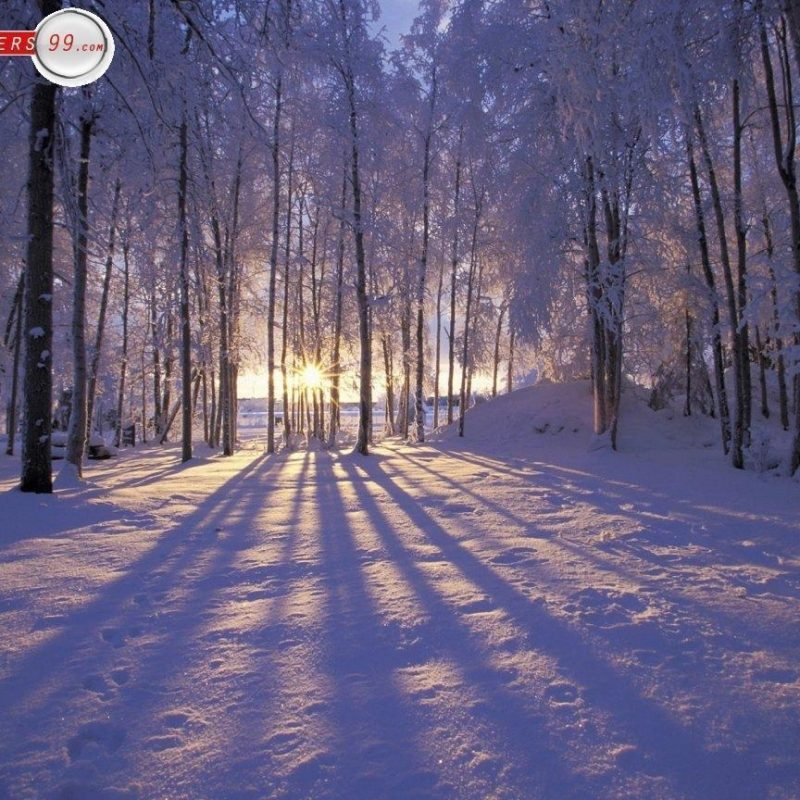 10 New Winter Scenes Wallpapers Free FULL HD 1080p For PC Desktop 2018 free download free winter scene wallpapers wallpaper cave 1 800x800