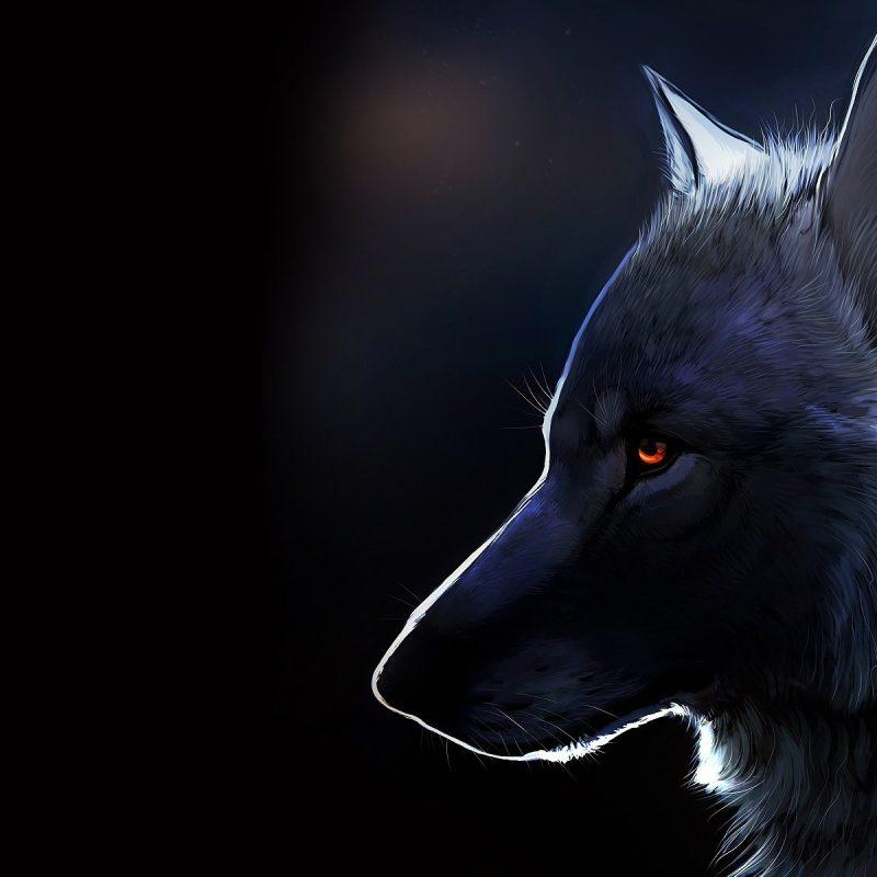 10 Latest Wolf Desktop Wallpaper Hd FULL HD 1920×1080 For PC Desktop 2020 free download %name
