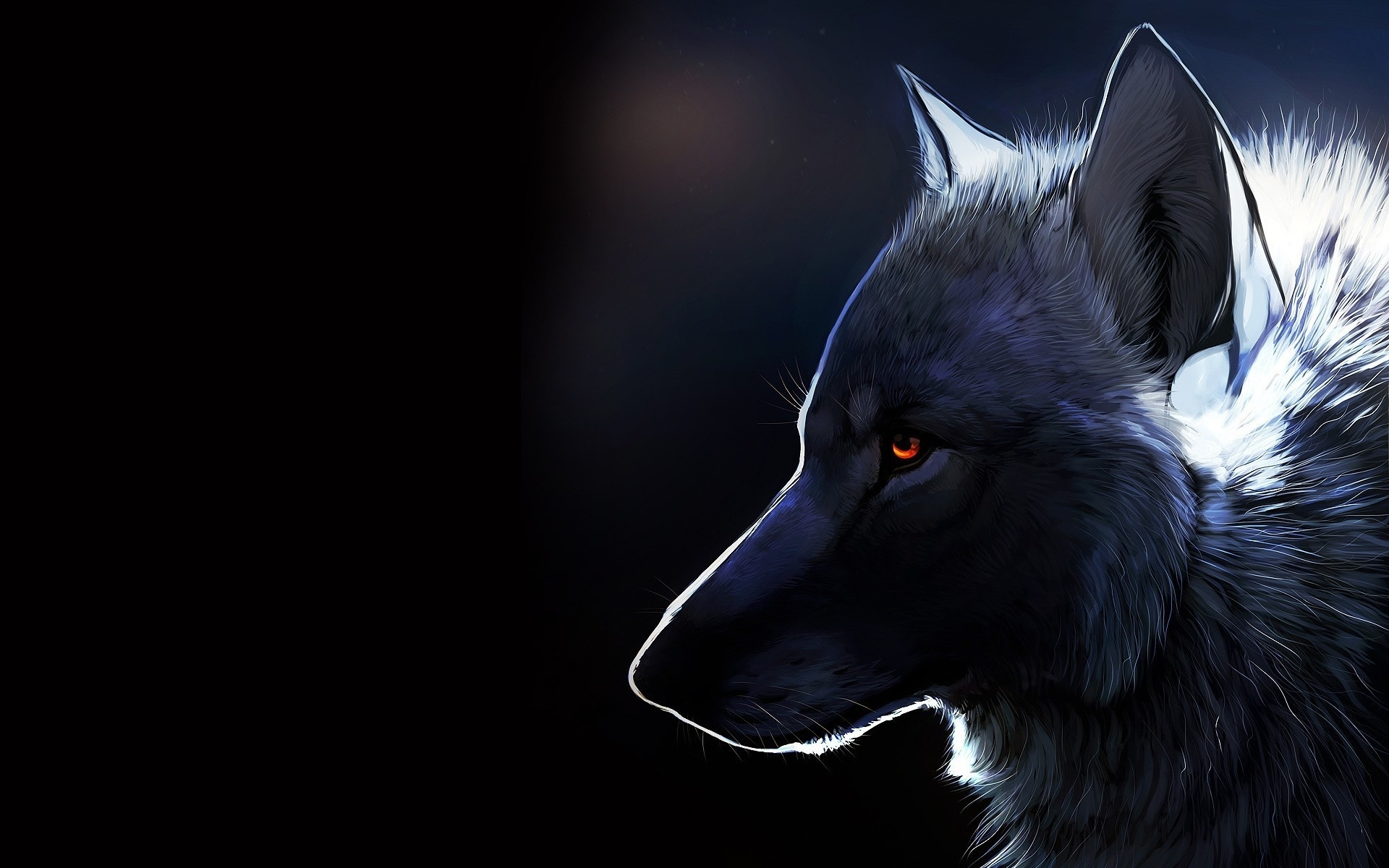 free wolf image « long wallpapers