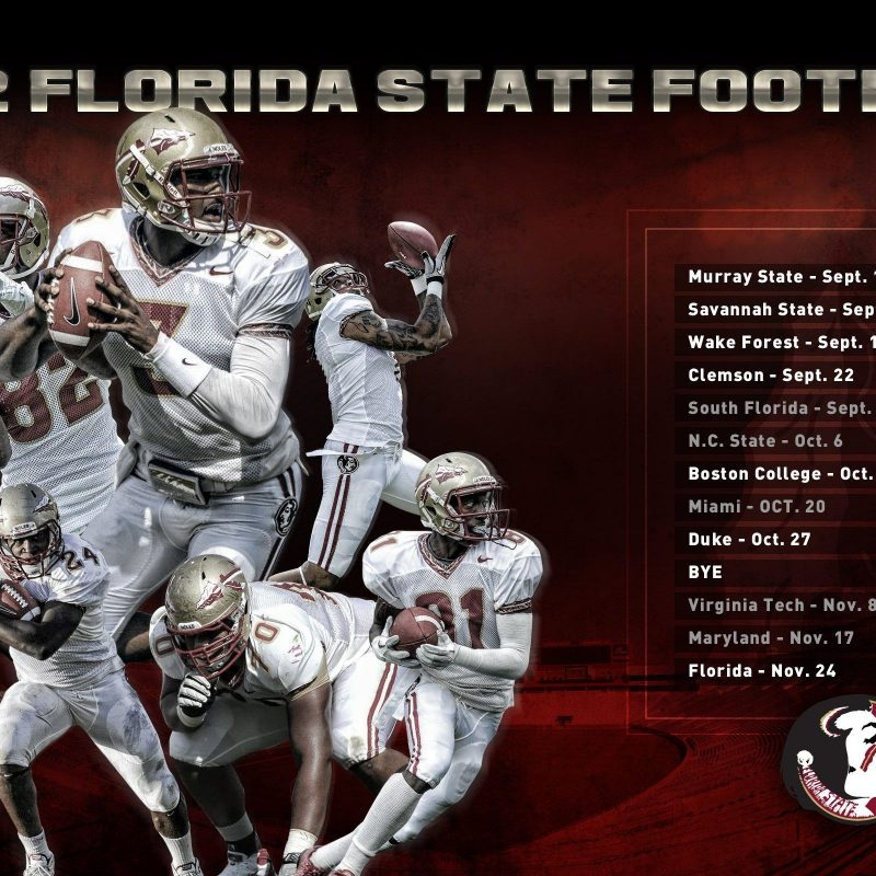 10 Top Florida State Football Wallpaper FULL HD 1920×1080 For PC Background 2021 free download fsu 2012 football wallpaper 800x800