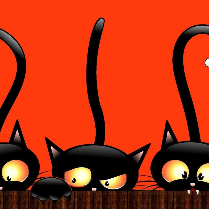 10 Top Cute Cat Halloween Wallpaper FULL HD 1920×1080 For PC Background 2018 free download full hd hello kitty halloween wallpaper ololoshenka pinterest 800x800