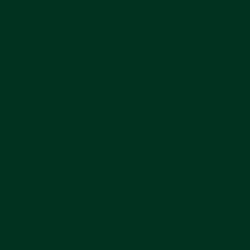 10 Most Popular Dark Green Wallpaper Hd FULL HD 1920×1080 For PC Desktop 2020 free download full hd of earth moon jupiter wallpaper dark green high quality pc 800x800