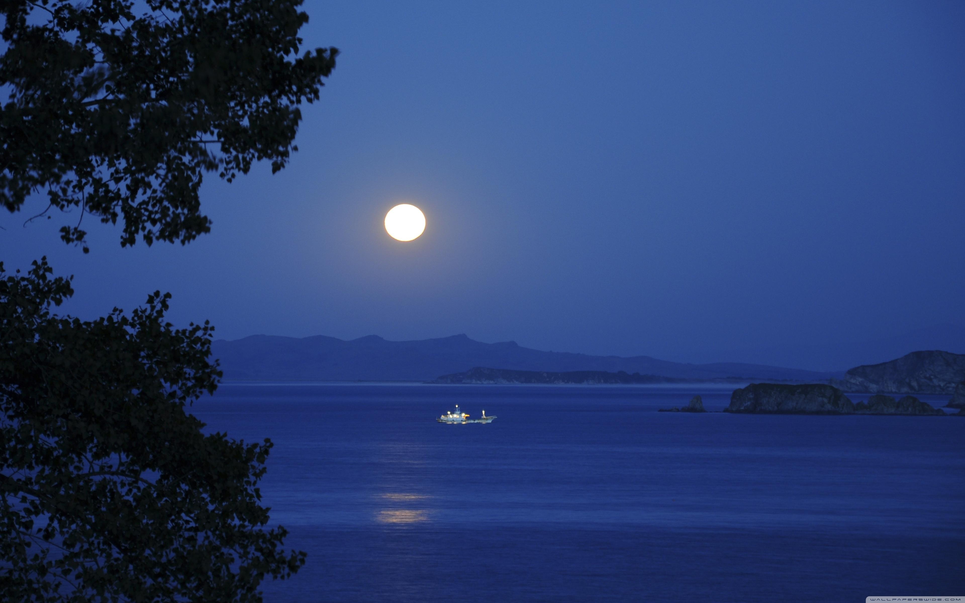 full moon night ❤ 4k hd desktop wallpaper for • wide & ultra