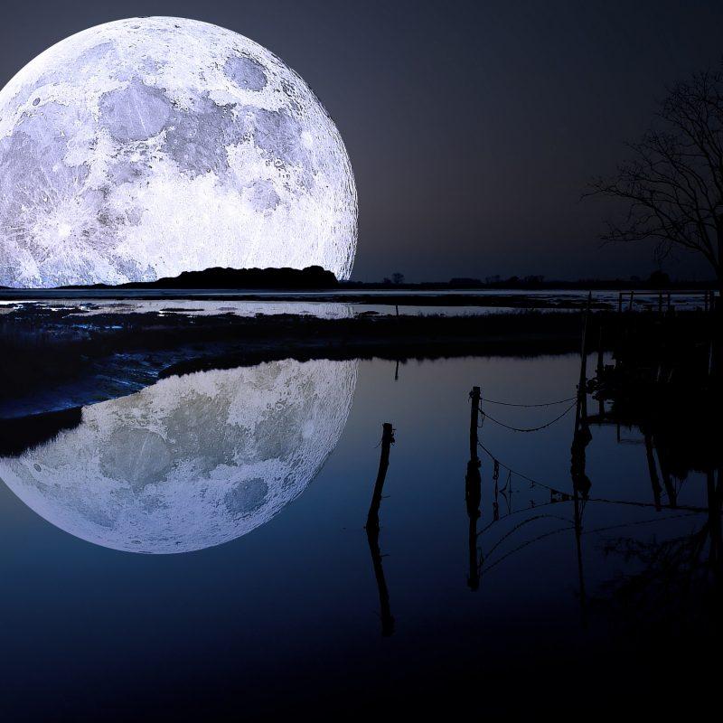 10 Top Full Moon Wallpaper Hd FULL HD 1920×1080 For PC Background 2021 free download full moon wallpapers hd wallpapers id 12325 800x800