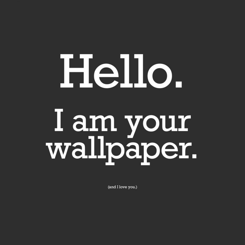 10 Most Popular Funny Quotes For Wallpapers FULL HD 1080p For PC Background 2018 free download funny quote wallpapers pictures images 3 800x800