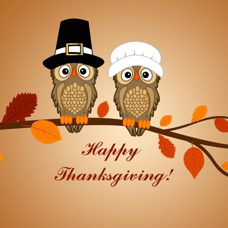 10 Latest Cute Thanksgiving Wallpaper Backgrounds FULL HD 1920×1080 For PC Background 2018 free download funny thanksgiving backgrounds 62 images 800x800
