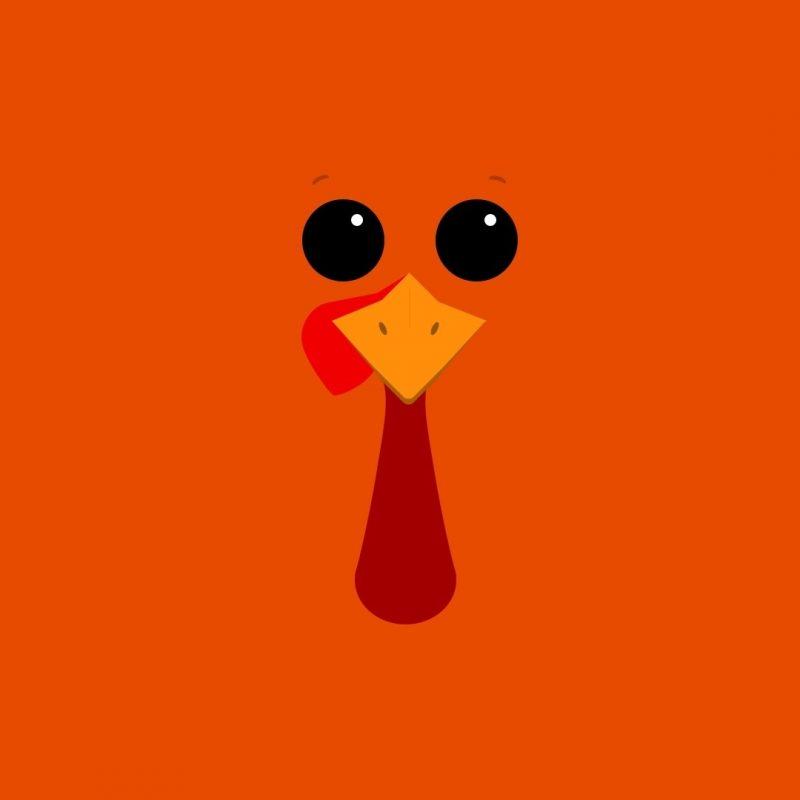 10 Latest Cute Thanksgiving Desktop Wallpaper FULL HD 1080p For PC Desktop 2021 free download funny thanksgiving themes events pinterest thanksgiving 1 800x800