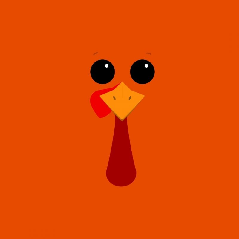 10 New Turkeys For Thanksgiving Wallpaper FULL HD 1080p For PC Desktop 2018 free download funny thanksgiving themes events pinterest thanksgiving 800x800
