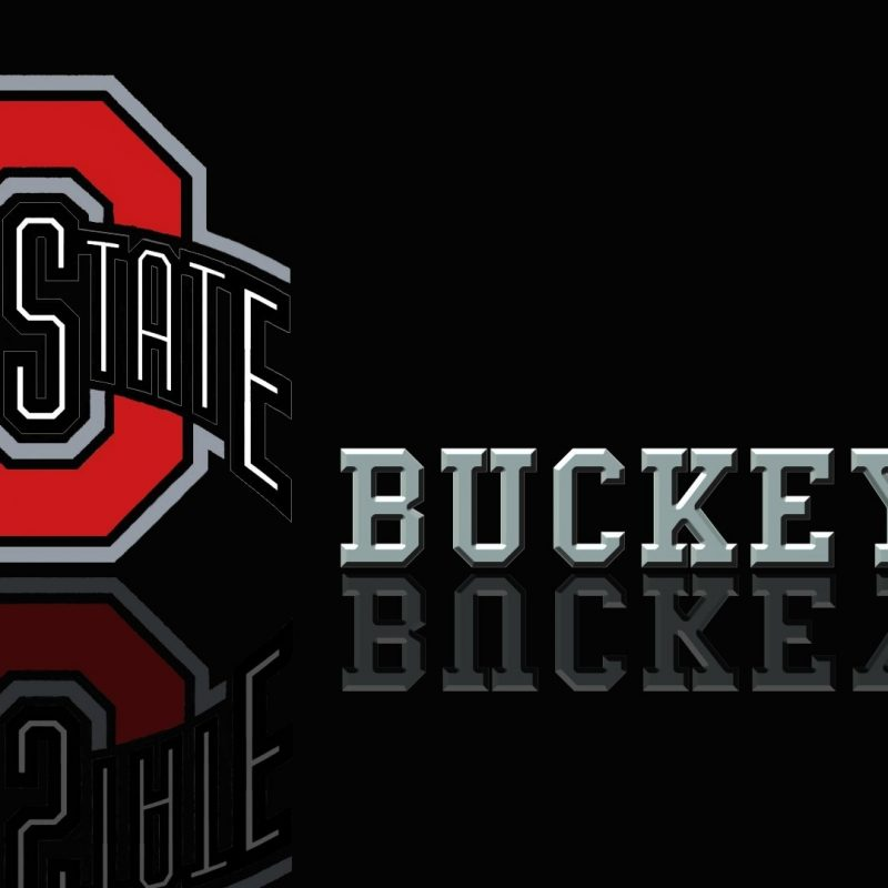 10 New Ohio State Buckeyes Wallpaper FULL HD 1080p For PC Desktop 2018 free download gallery for ohio state buckeyes wallpapers 800x800