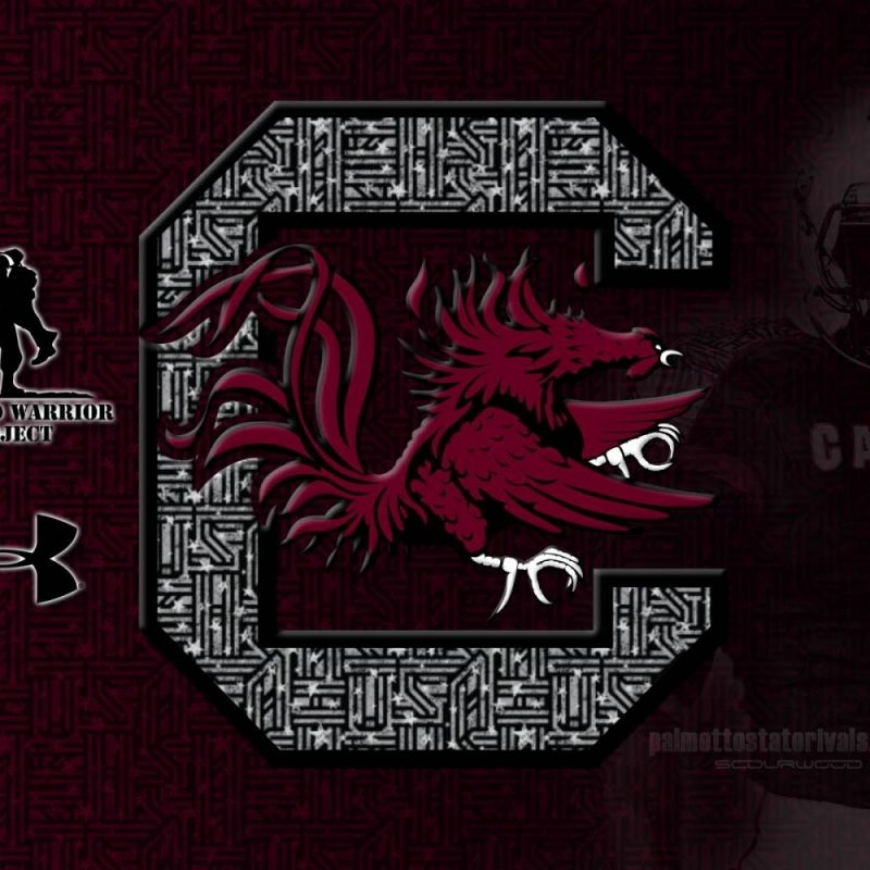 10 Top University Of South Carolina Wallpaper FULL HD 1080p For PC Background 2021 free download gamecocks wallpapers group 57 800x800