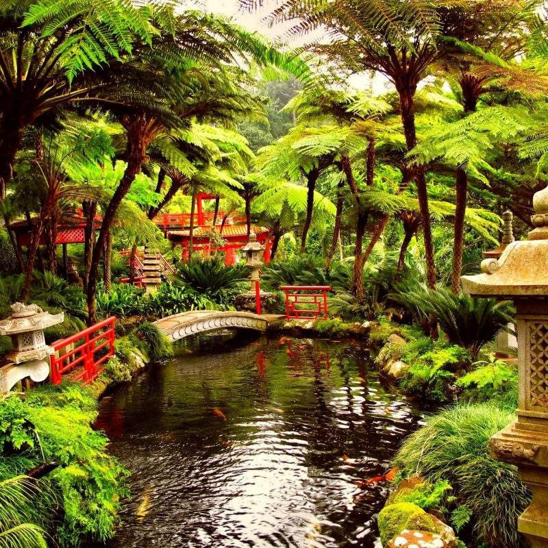 10 Best Japanese Garden Wallpaper 1920X1080 FULL HD 1080p For PC Desktop 2018 free download garden wallpaper for desktop 3 decoration idea enhancedhomes 800x800