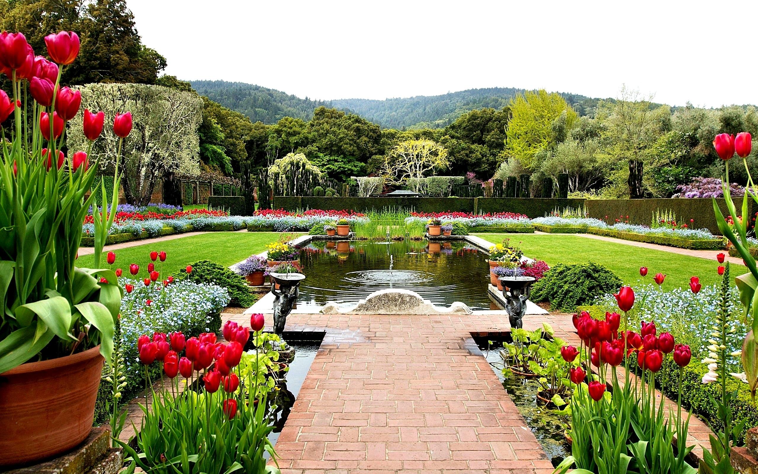 Title : Garden Wide Desktop Background U2013 Follow9. Dimension : 2560 X 1600.  File Type : JPG/JPEG
