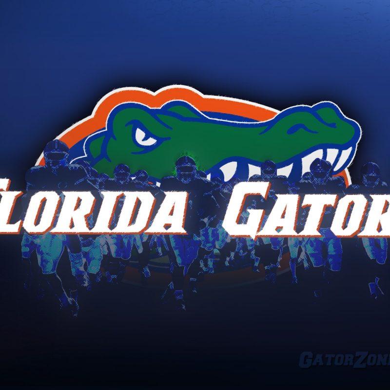 10 Best Florida Gators Football Wallpaper FULL HD 1920×1080 For PC Background 2020 free download gator florida gators wallpapers at gatorzone florida gator 800x800