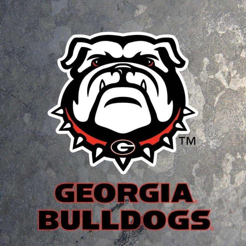 10 Latest Georgia Bulldogs Football Wallpaper FULL HD 1920×1080 For PC Background 2018 free download georgia bulldogs wallpapers wallpaper cave 800x800
