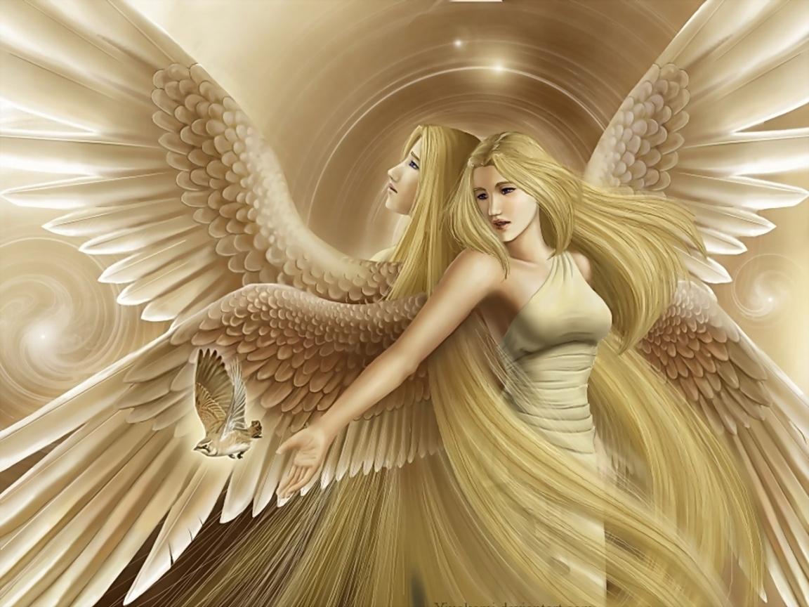 gif angel images | 3d angel | 1152 x 864 | download | close | angels