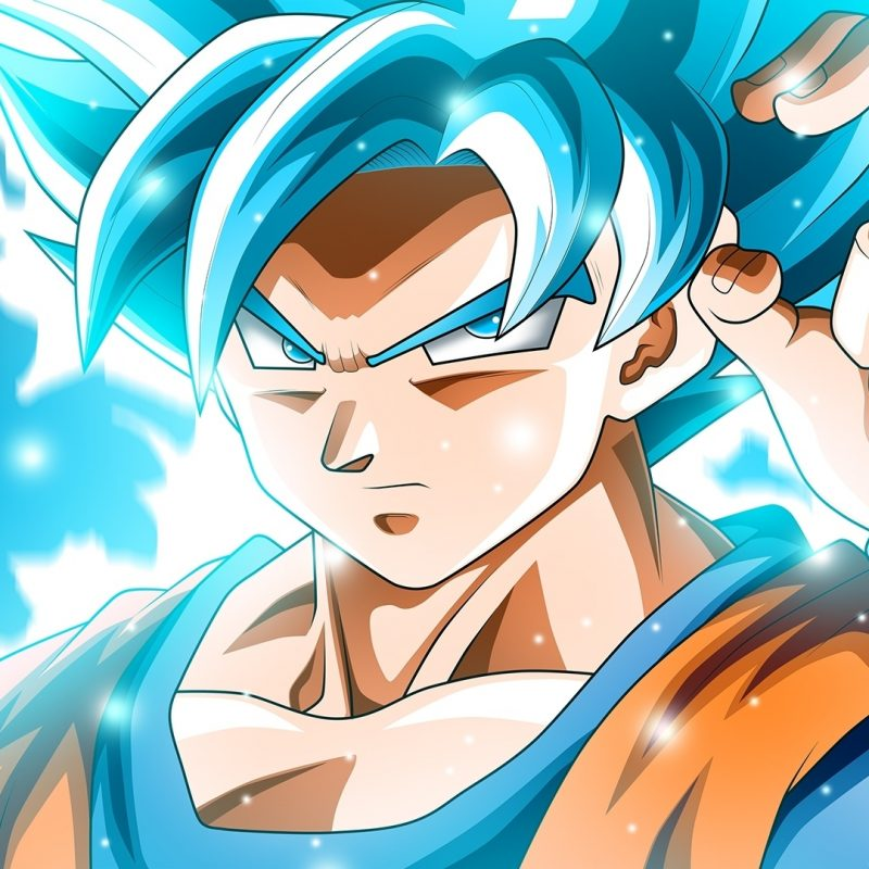 10 Best Goku Super Saiyan Blue Wallpaper Hd FULL HD 1920×1080 For PC Background 2018 free download goku super saiyan blue dragon ball s wallpaper 42234 800x800