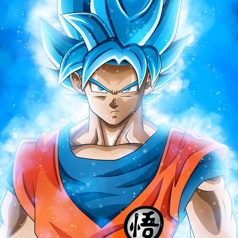10 Most Popular Goku Super Saiyan Hd Wallpapers 1080P FULL HD 1080p For PC Background 2020 free download goku super saiyan blue dragon ball s wallpaper 42318 800x800