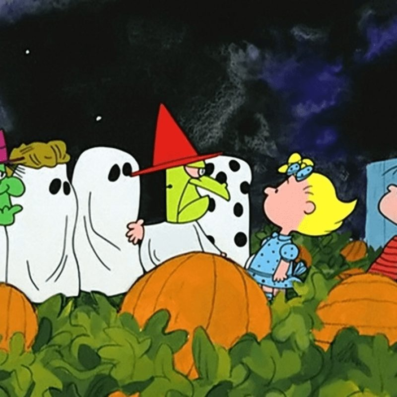 10 New Great Pumpkin Charlie Brown Pictures FULL HD 1920×1080 For PC Background 2021 free download good grief 10 things you didnt know about its the great pumpkin 800x800