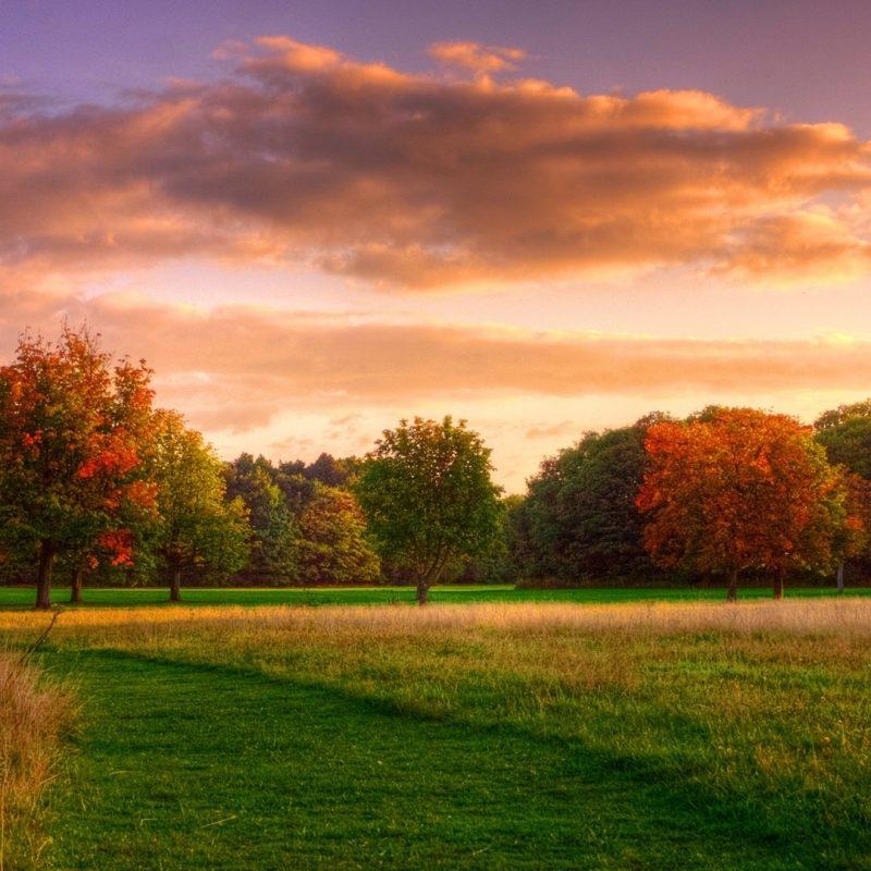 10 Latest Autumn Landscape Wallpaper Hd FULL HD 1920×1080 For PC Desktop 2018 free download gorgeous autumn landscape wallpapermartez hawkins on fl nature 800x800