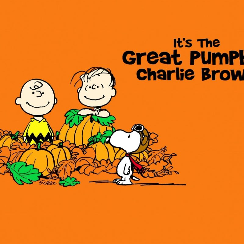 10 Latest Great Pumpkin Charlie Brown Wallpaper FULL HD 1920×1080 For PC Desktop 2018 free download great pumpkin charlie brown background hd wallpaper wiki 800x800
