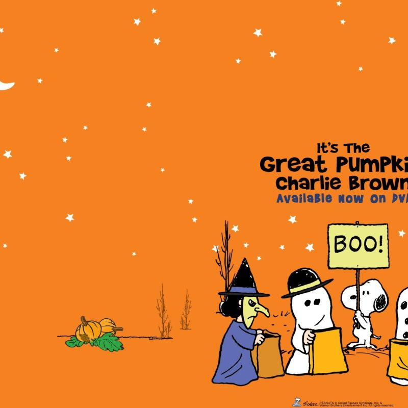 10 Latest Great Pumpkin Charlie Brown Wallpaper FULL HD 1920×1080 For PC Desktop 2018 free download great pumpkin charlie brown backgrounds hd wallpaper wiki 800x800