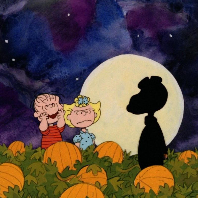 10 Latest Great Pumpkin Charlie Brown Wallpaper FULL HD 1920×1080 For PC Desktop 2018 free download great pumpkin charlie brown wallpapers hd sharovarka pinterest 800x800