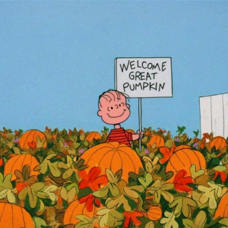 10 Most Popular The Great Pumpkin Wallpaper FULL HD 1920×1080 For PC Background 2020 free download great pumpkin charlie brown wallpapers wallpaper cave 4 800x800