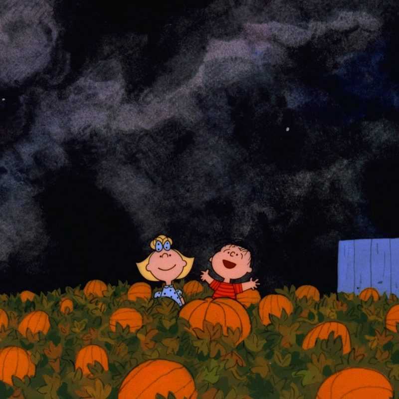 10 Latest Great Pumpkin Charlie Brown Wallpaper FULL HD 1920×1080 For PC Desktop 2018 free download great pumpkin charlie brown wallpapers wallpaper cave 800x800