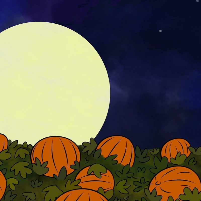 10 Latest Great Pumpkin Charlie Brown Wallpaper FULL HD 1920×1080 For PC Desktop 2018 free download great pumpkin charlie brown wallpapers wallpaper wiki 800x800