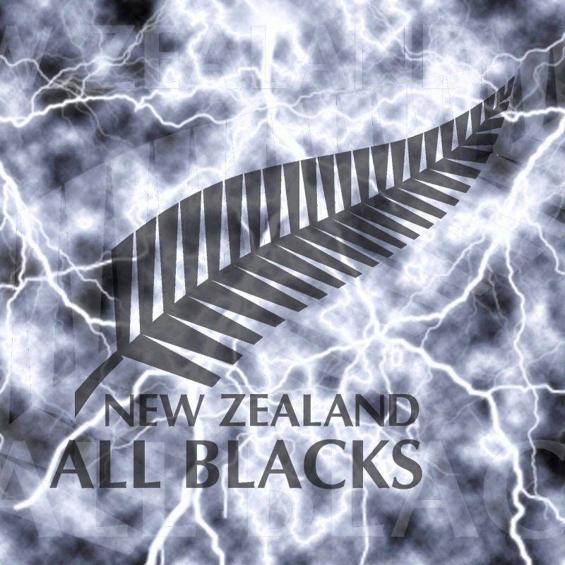 10 Most Popular New Zealand All Blacks Wallpapers FULL HD 1080p For PC Background 2020 free download great white shark wallpaper animal wallpaper hd wallpapers 800x800