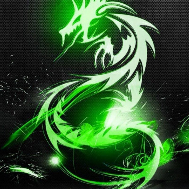10 Top Dragon Wallpaper For Mobile FULL HD 1920×1080 For PC Desktop 2020 free download green dragons wallpaper 2139 800x800