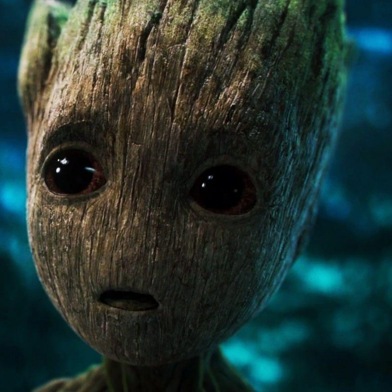 10 Latest Baby Groot Hd Wallpaper FULL HD 1080p For PC Background 2020 free download groot wallpapers wallpaper cave 2 800x800